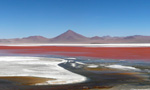 Laguna Colorada, Lipez, Bolivie