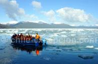 fjord Peel croisiere
