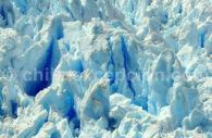glacier croisiere