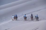 Promenade dans le désert d'Atacama, Chili