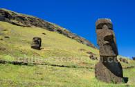 Rapa Nui Tapati
