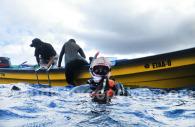 Plongée dans le Pacifique