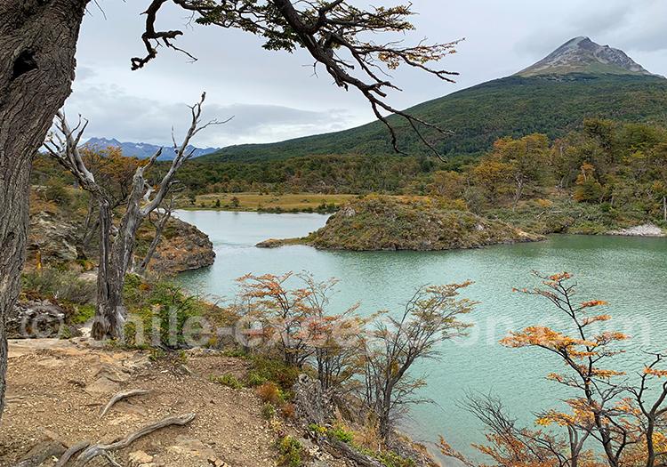 Visite du parc Terre de Feu, Ushuaia