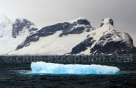 Scène de la péninsule antarctique – Crédit Miss Scuba