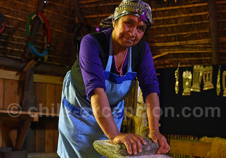 Rencontre art et culture mapuche
