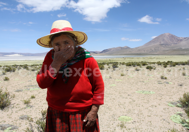 Habitants du Nord du Chili, Salar de Surire