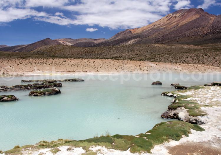 Polloquere, Chili