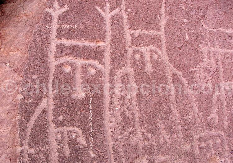 Figure non identifiée, Yerbas Buenas, Atacama