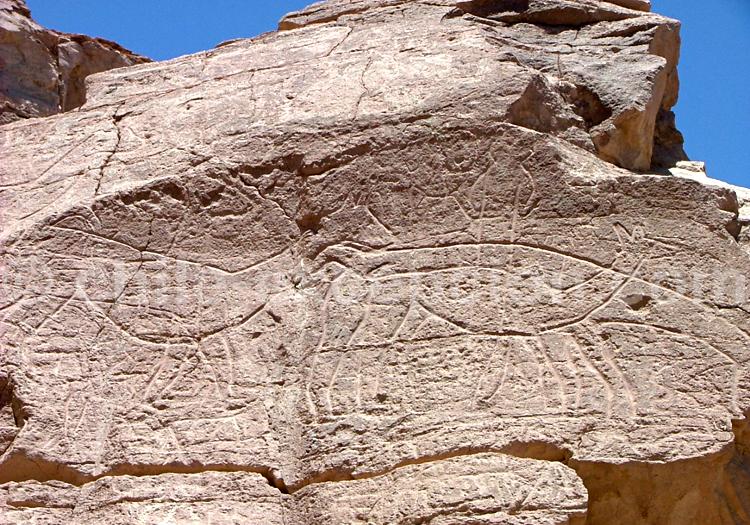 Pétroglyphe, Chiu Chiu, Atacama