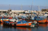 Le port des pêcheurs d'Iquique