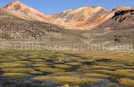 Cerro Suriplaza