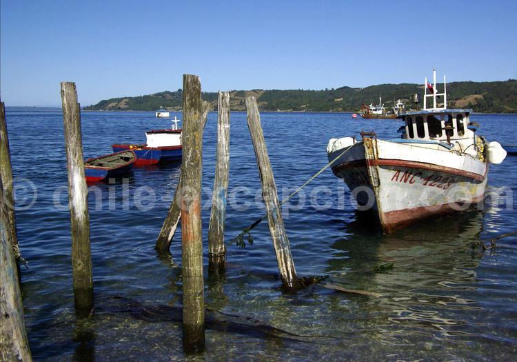 Bateau au port, Puerto Montt