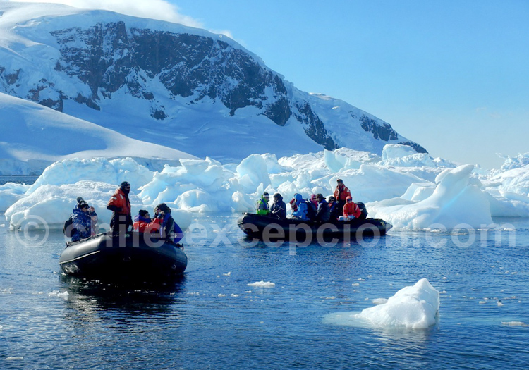 Excursion en Antarctique