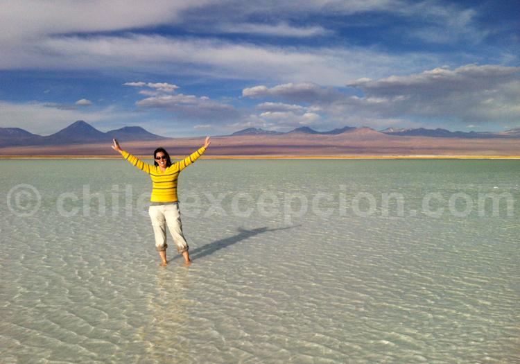 Désert d'Atacama, Nord du Chili