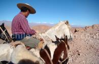 A cheval dans le désert d'Atacama