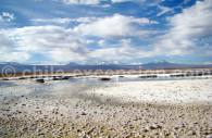Lagune du nord du Chili