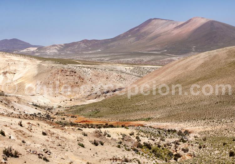 Plaine de haute altitude, Chili