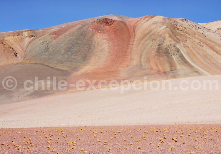 Montagnes de hauts plateaux andins, Chili