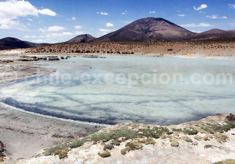 Chile Excepcion, Agence de voyage en ligne