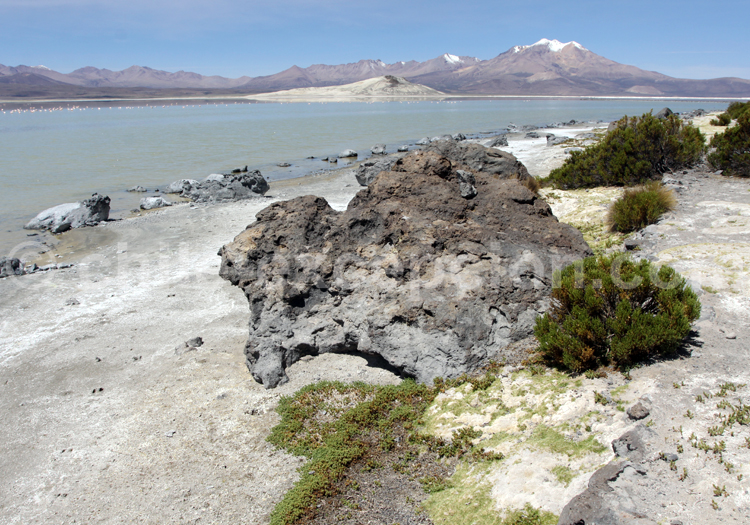 Séjours individuels et sur mesure au Chili