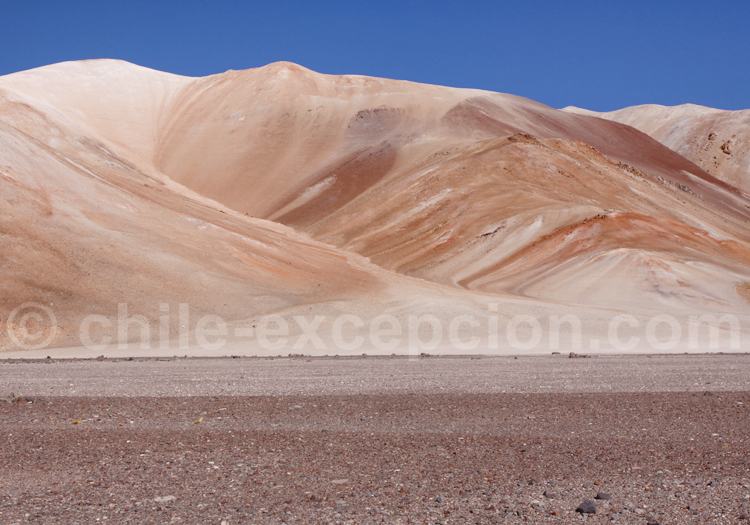 Altiplano, Nord du Chili