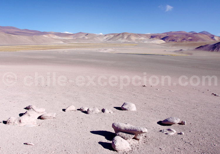 Zone aride de l'Altiplano