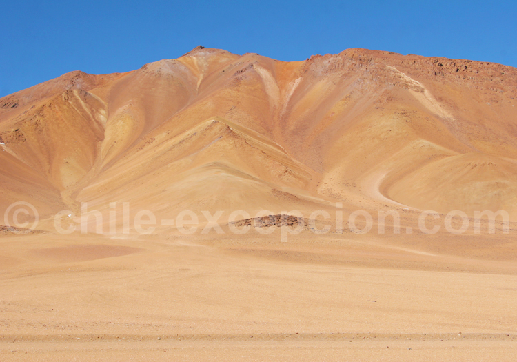 Séjours premium au Chili
