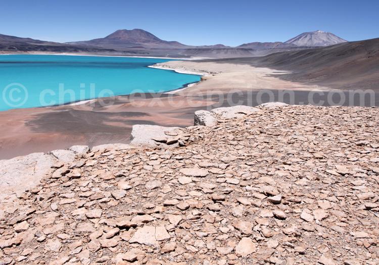 Lagune au coeur du désert d'Atacama