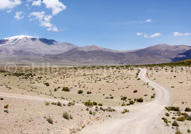 Arica et Parinacota