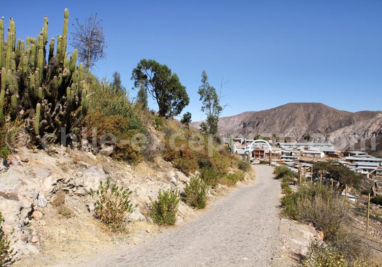 Village de Socoroma, Chili