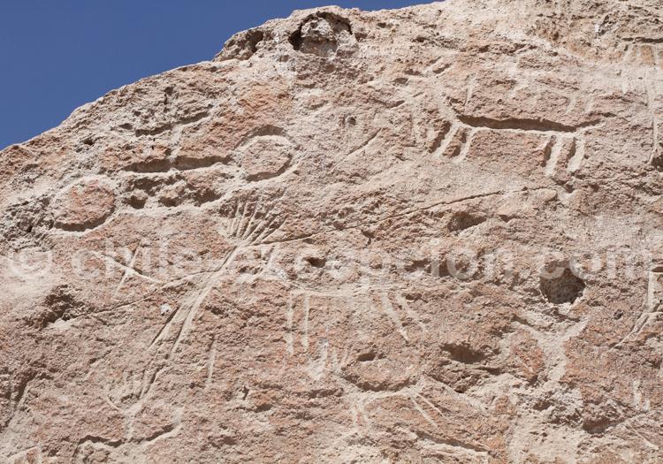 Vallée de Lluta, pétroglyphes