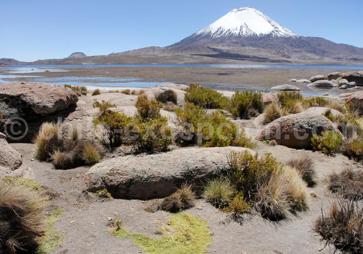 Région de Putre, Chili