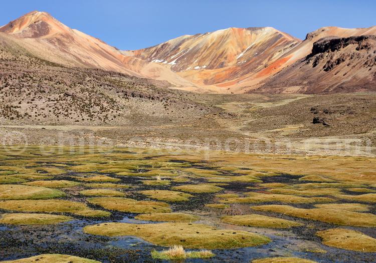 Cerros de Suriplaza