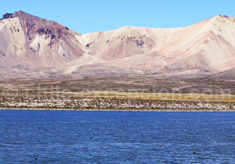Paysages de la Puna, Chili