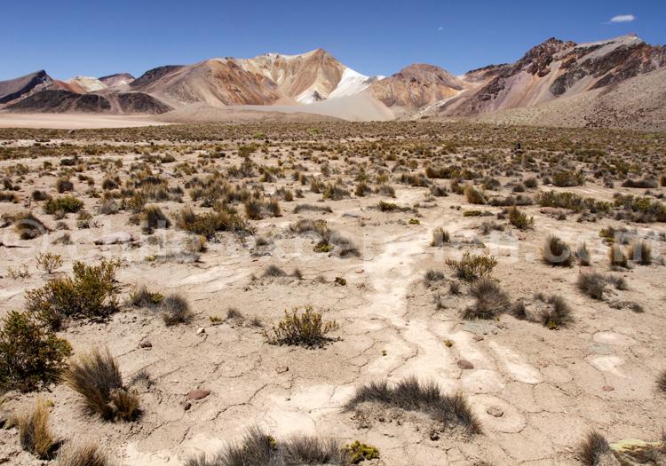 Voyage haut de gamme au Chili