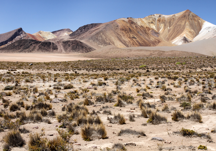 Agence de voyage en ligne, Chili
