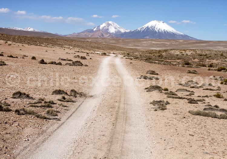 Altiplano, Parinacota