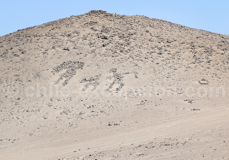 Formes anthropomorphes, Cerro Sombrero