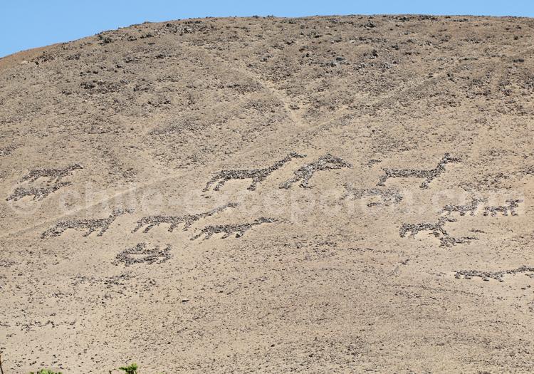 Géoglyphes Cerro Sombrero