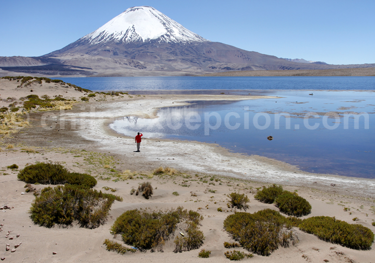 Agence de voyage spécialisée au Chili