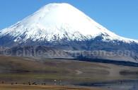 Volcan, Chili