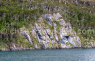 Navigation au coeur des fjords, Chili