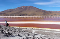 Laguna Roja, Atacama