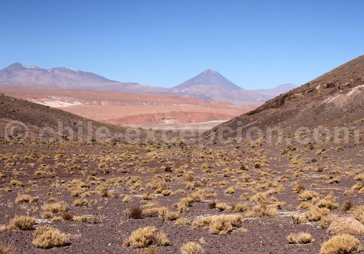 Matancilla, Régin d'Atacama