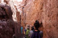 Trekking dans la quebrada de Kari