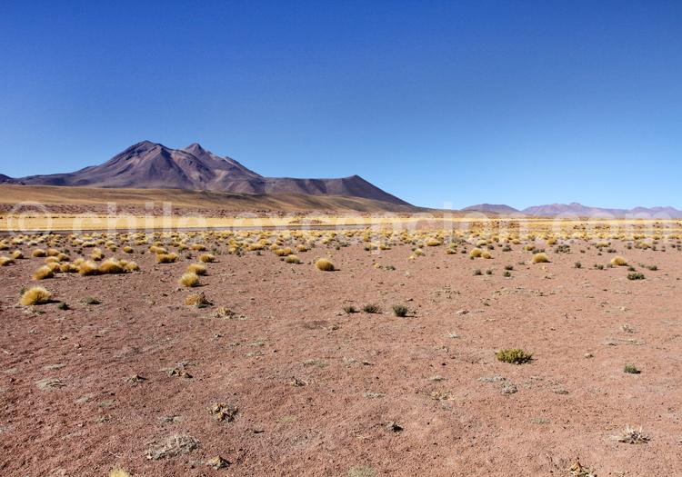Paysage du Chili, Atacama