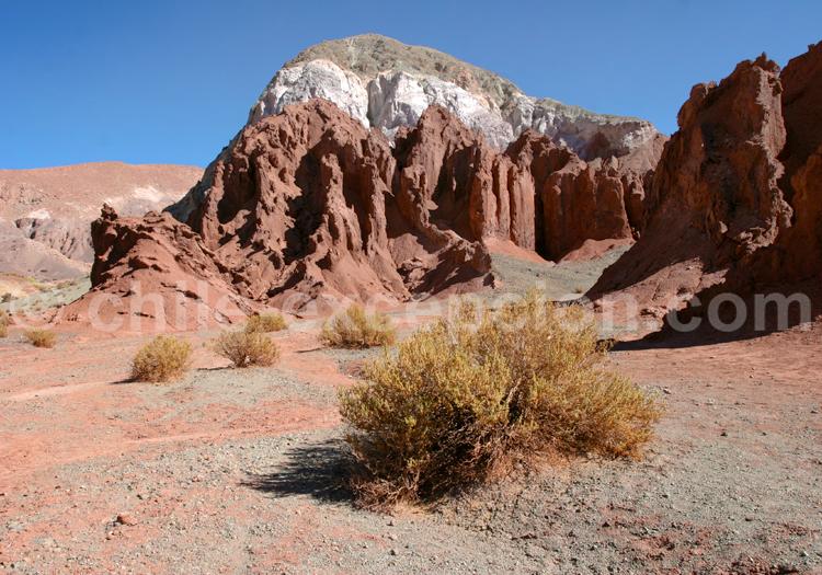Arc-en-ciel de couleurs, Atacama