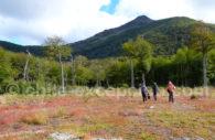 Circuit individuel en Patagonie