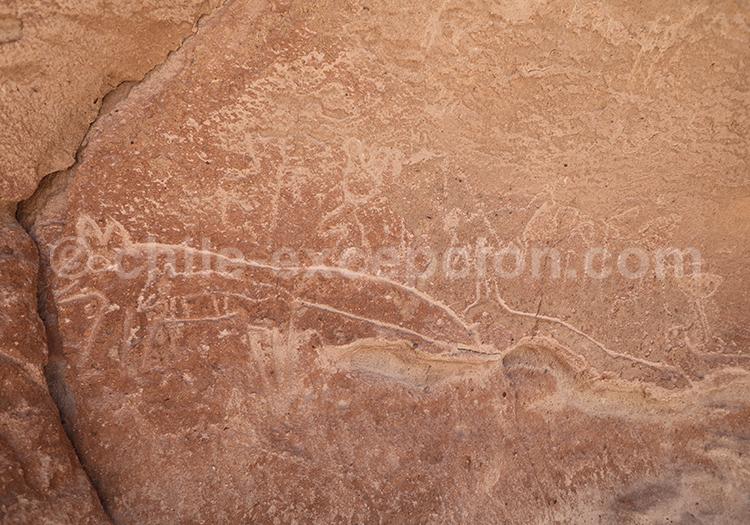 Site archéologique de Hierbas Buenas