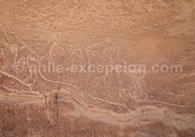 Yerbas Buenas, San Pedro de Atacama